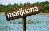 image of mary jane  - Marijuana wooden sign and the beach as the background - JPG