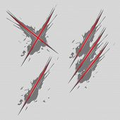pic of claw  - Animal claw scratches on background vector illustration - JPG