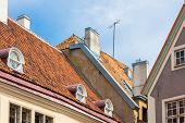 pic of olaf  - Traditional houses Tallinn in Estonia - JPG
