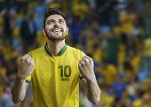 image of arena  - Brazilian man celebrates on the arena background - JPG