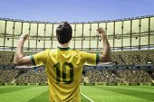 picture of arena  - Brazilian soccer player celebrates with the fans on the stadium - JPG