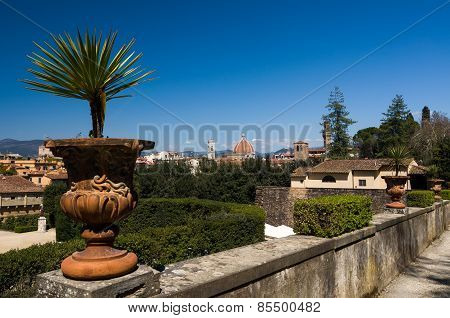 Vase With A Flower In The Foreground And The Basilica