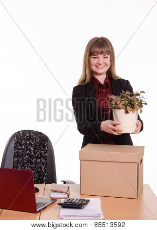 Girl Office About Desktop Keeps Indoor Flower In Pot