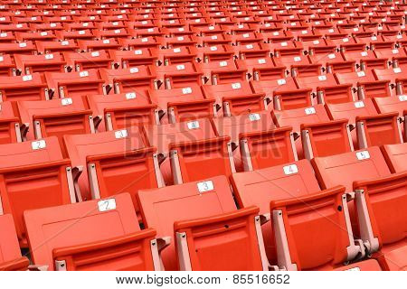 Red folding chairs lined on the stadium sport