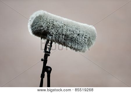 Furry Sport Microphone