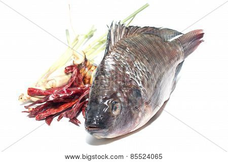 cook thai tilapia fish
