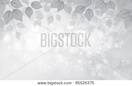 Vector birch leaves border, grey colors bokeh background.