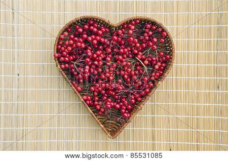 Fresh Viburnum Red Healthy Berry In Wicker Basket