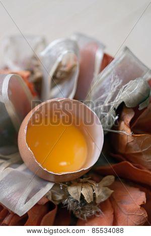 Broken Egg And Still Life