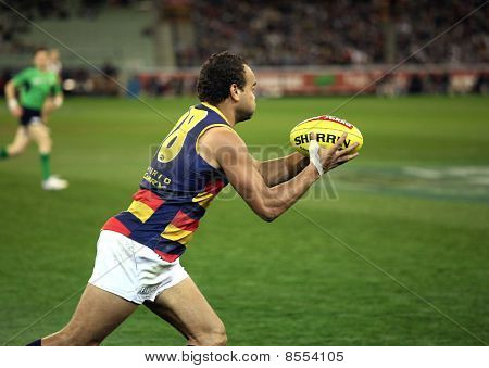 Melbourne - August 21:  Adeaide's Graham Johncock In Action During Collingwood's Win Over Adelaide -