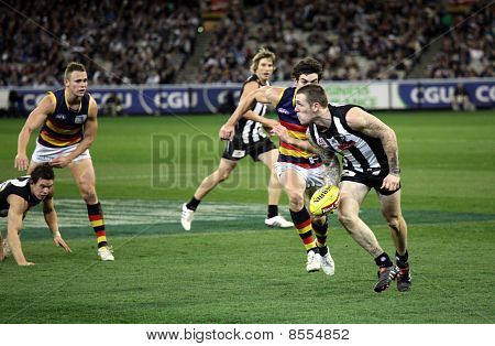 Melbourne - August 21:  Collingwood's Dane Swan In Action During Collingwood's Win Over Adelaide - A
