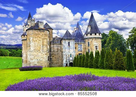 Fairy castles of France series, medieval castle with lavander fi