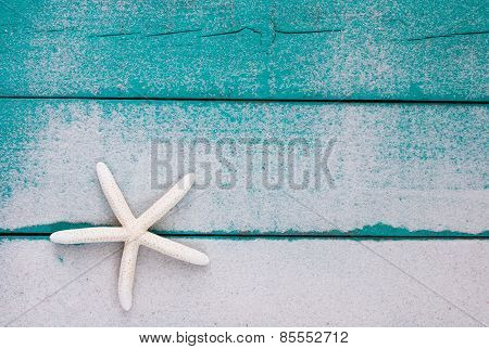 White starfish on sandy teal blue wood sign