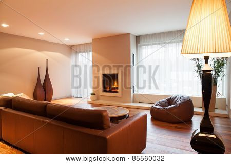 Leather Sofa In Drawing Room