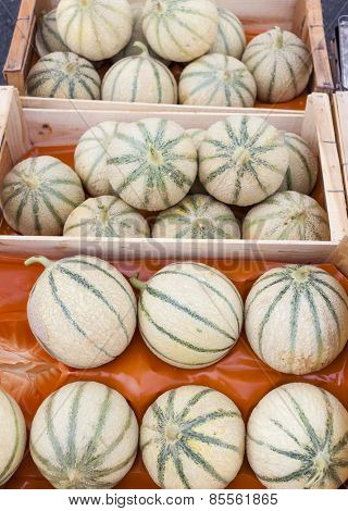 melons cantaloupe, market in Nyons, Rhone-Alpes, France
