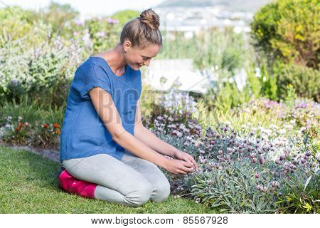 Pretty blonde tending to flowers in the garden