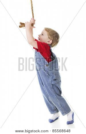 Profile of an adorable toddler wearing train engineer's pinstriped overalls happily stretching high to pull the rope that ring's the engine's bell.  On a white background.