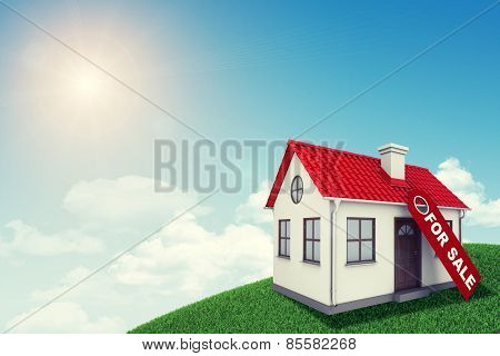 White house with red roof for sale on green grassy hill. Background sun shines brightly,