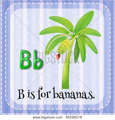 Flash card letter B is for bananas