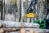 picture of logging truck  - Captures a timber loader stack of log - JPG