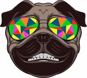 stock photo of pug  - Vector illustration of funny pug smiling on a white background - JPG