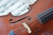 picture of violin  - German ancient violin and notes - JPG