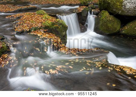 Fallen leaves and cascade