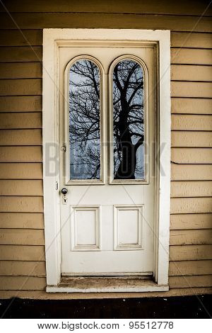 Old Door Reflects Creepy Tree