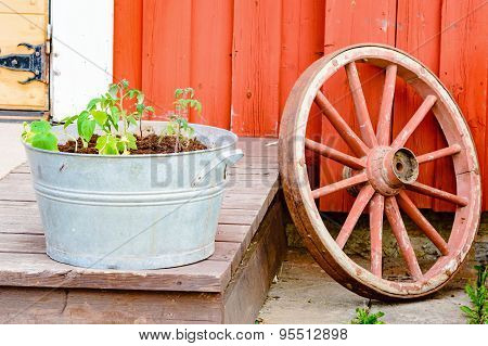 Wheel And Plants