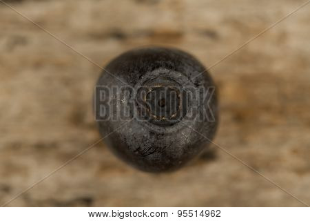 Fresh Blueberries On Wooden Background, Macro