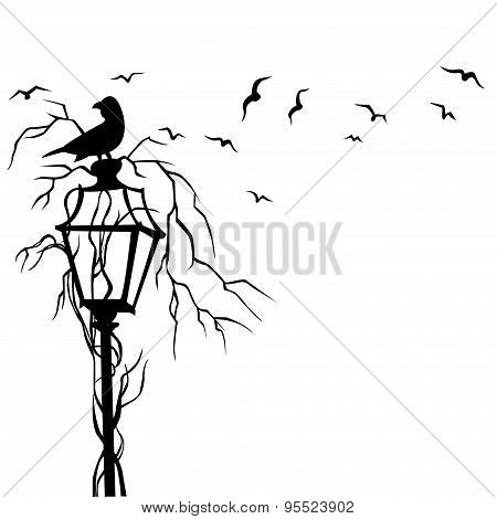 Birds In Street Wall Decal Vector Illustration