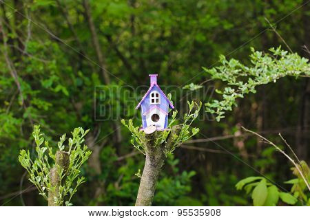Colorful birdhouse on tree branch