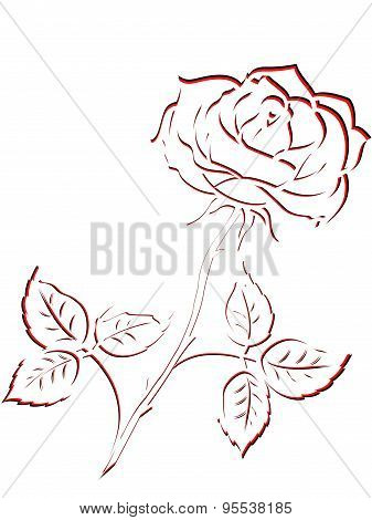 Black And Red Outline Of Rose Flower