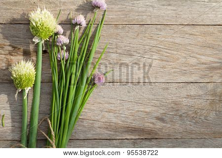 Fresh garden spring onion on garden table. Top view with copy space