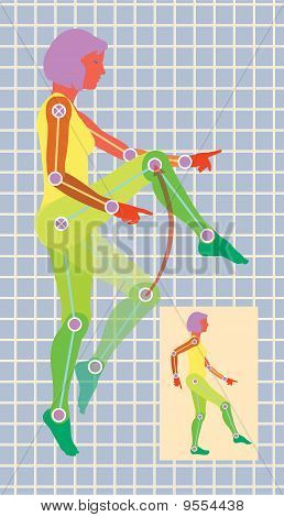 Adjustable female figure exercise