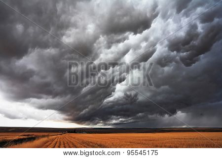 The massive storm cloud covered the sky. The harvest in the fields of Montana