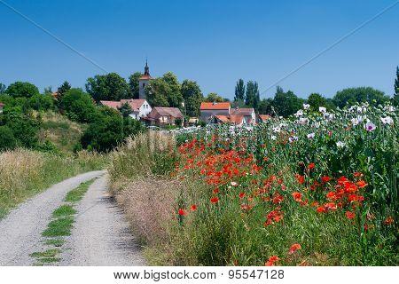 Rural Road To Beautiful Czech Village Through Poppy Field