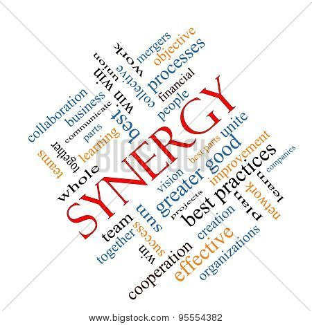 Synergy Word Cloud Concept Angled