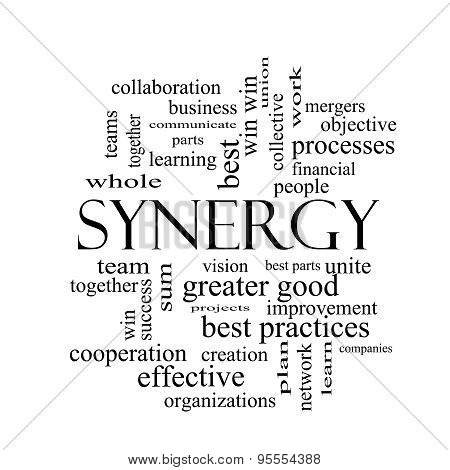 Synergy Word Cloud Concept In Black And White