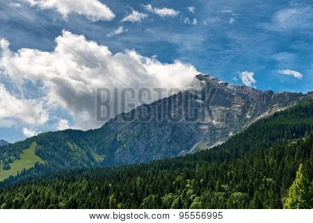 Fir covered mountain valley with rocky mountain peak in backdrop, beneath blue sky and white clouds