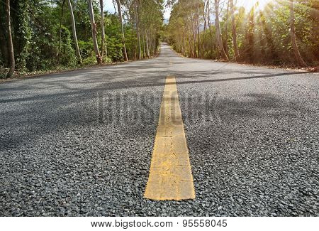 yellow lines in a road