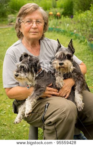 Senior Happy Woman In Glasses And Two Black And Silver Miniature Schnauzer Dogs In A Garden