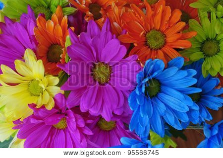 Bright flowers of different colors