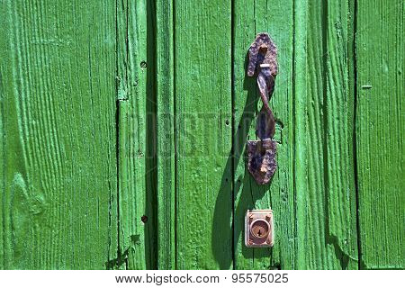 Brown Knocker In A Lanzarote Abstract  Spain