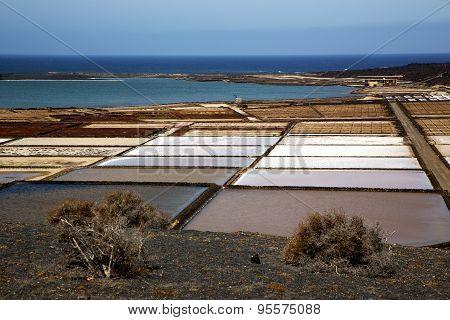 Coastline Salt In  Lanzarote Spain  Sky  Water   And Summer