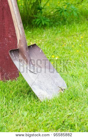 Red Spade Standing On Green Grass