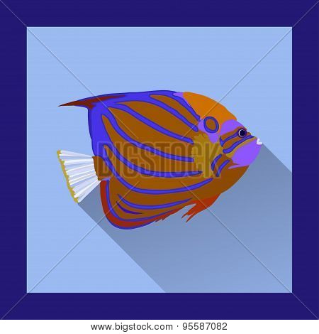 Coral Angelfish In Flat Style