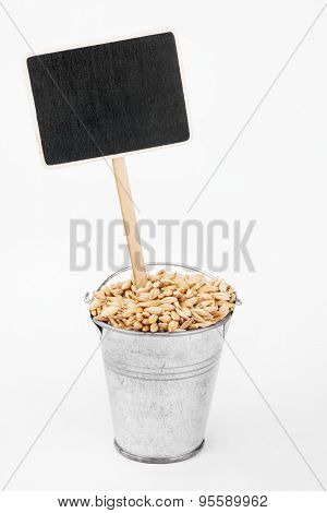 Pointer, Price In Bucket Of  Barley Grains
