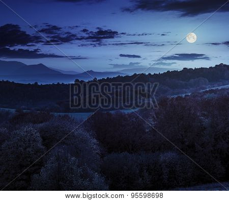 Autumn Forest On A  Mountain Hill At Night