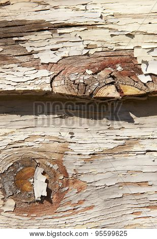 Scaling Paint Over A Warm Color Wooden Surface Outdoor